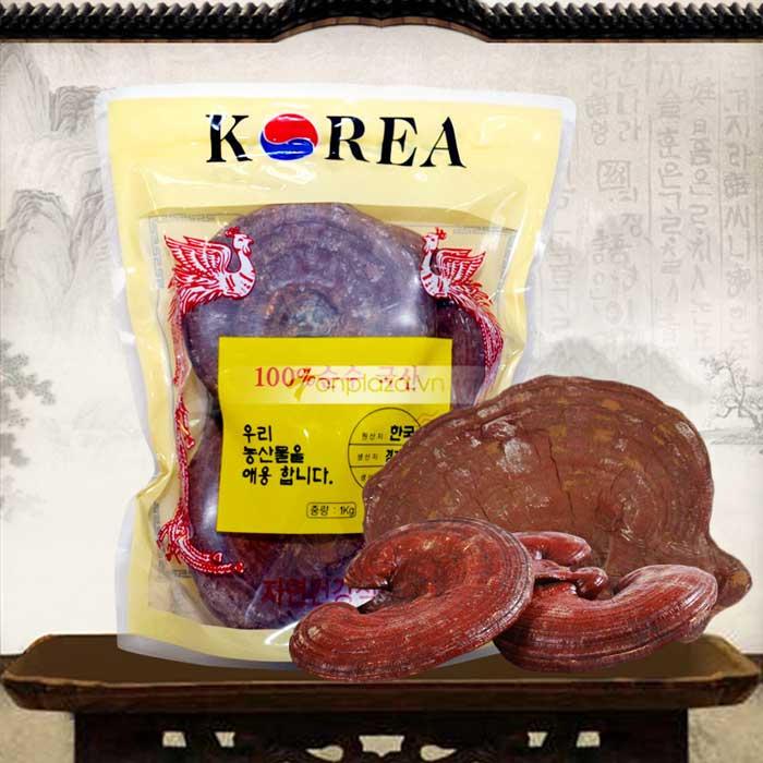 Công dụng của Nấm Linh Chi- Hàn Quốc