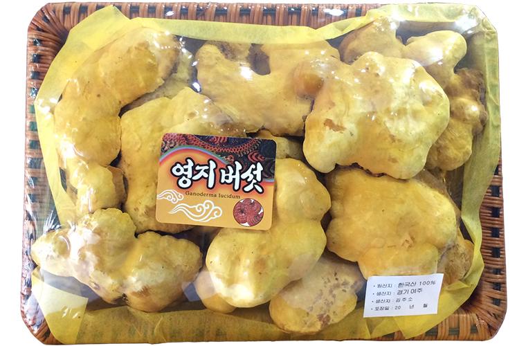 Nấm linh chi Thượng Hoàng Hàn Quốc 1kg đảm bảo chất lượng