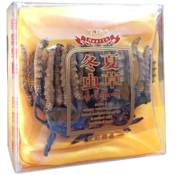 Đông trùng hạ thảo Tây Tạng thiên nhiên nguyên con 10g- Con đại 2
