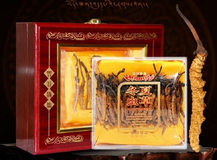 Đông trùng hạ thảo Tây Tạng thiên nhiên nguyên con 5g 1