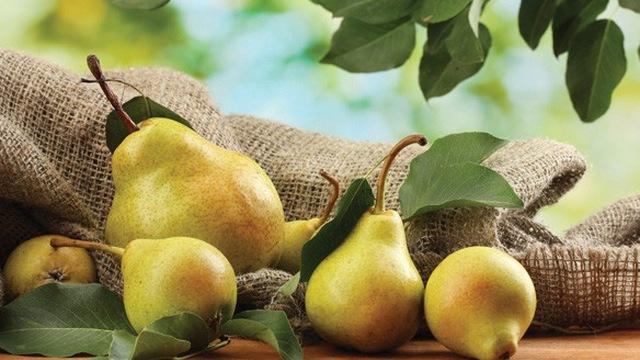 Bài thuốc từ tổ yến, quả lê kết hợp táo đỏ hấp mật ong siêu đơn giản, trị dứt điểm cơn đau họng 1