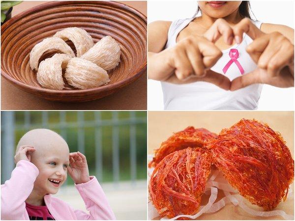 Công dụng tuyệt diệu của tổ yến đối với sức khỏe của người bệnh và bệnh nhân ung thư 3