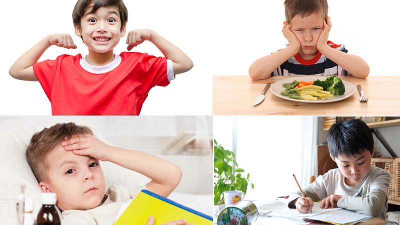 Thành phần dinh dưỡng trong tổ yến tốt như thế nào đối với hệ tiêu hóa của trẻ ? 2