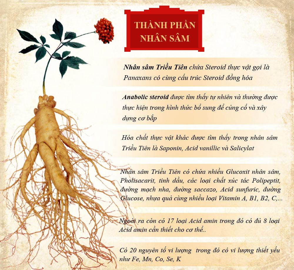Hoa và quả Nhân Sâm có sử dụng được không ? 4