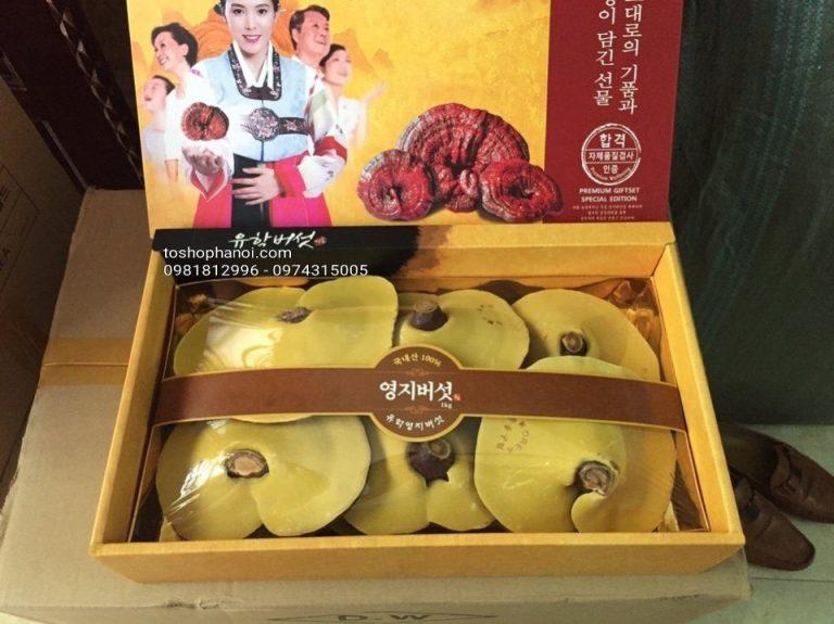 Mua Nấm linh chi ở Quận Phú Nhuận, Bình Thạnh đáng tin cậy, uy tín và chất lượng 3