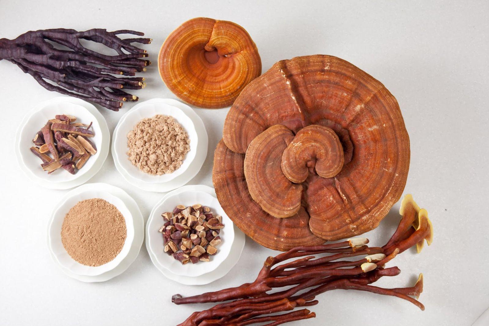 Tìm hiểu công dụng của nấm linh chi trong việc duy trì mức độ đường trong máu 2