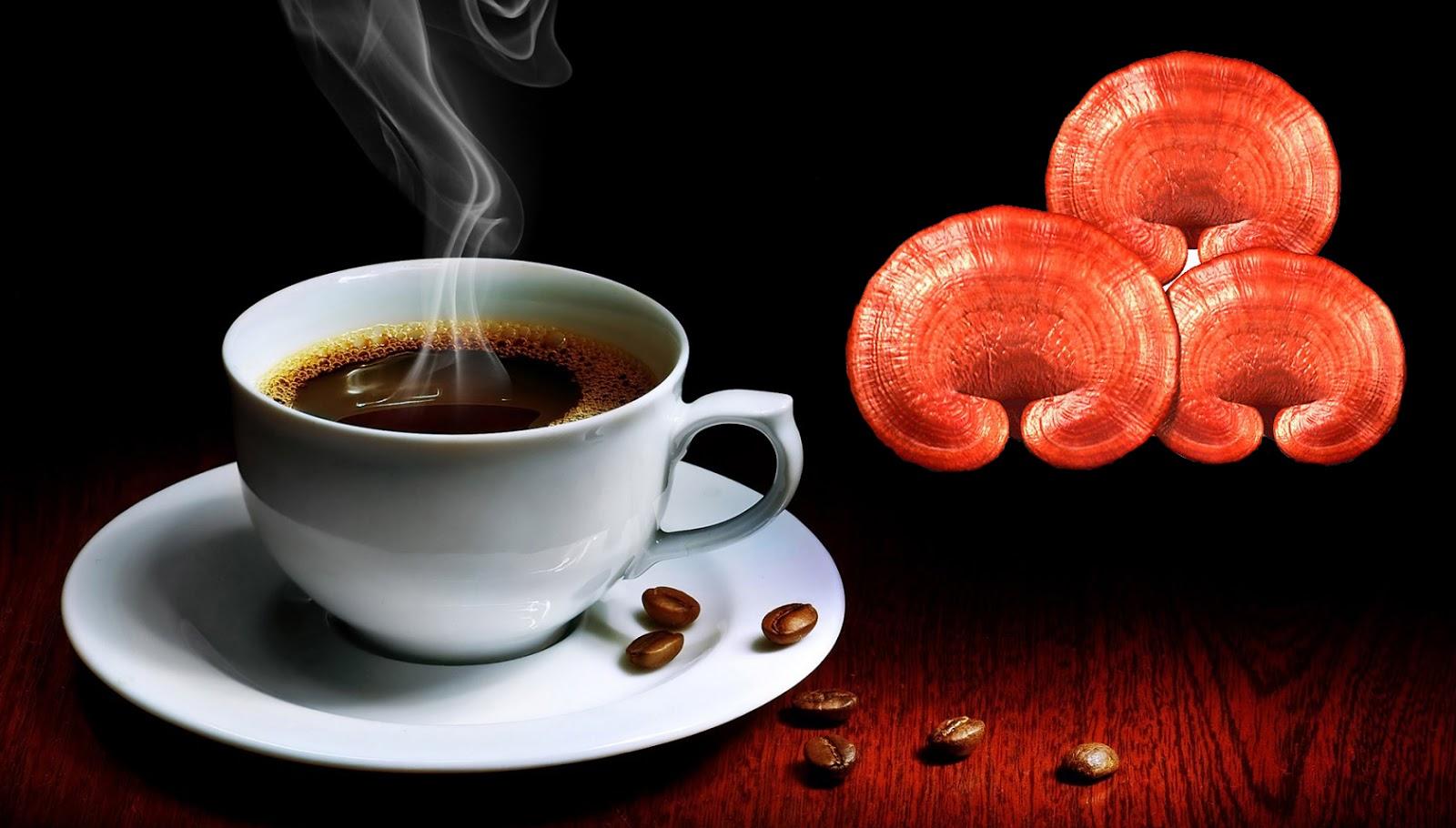 Chia sẻ: Cách giảm cân an toàn hiệu quả từ cafe nấm linh chi 1
