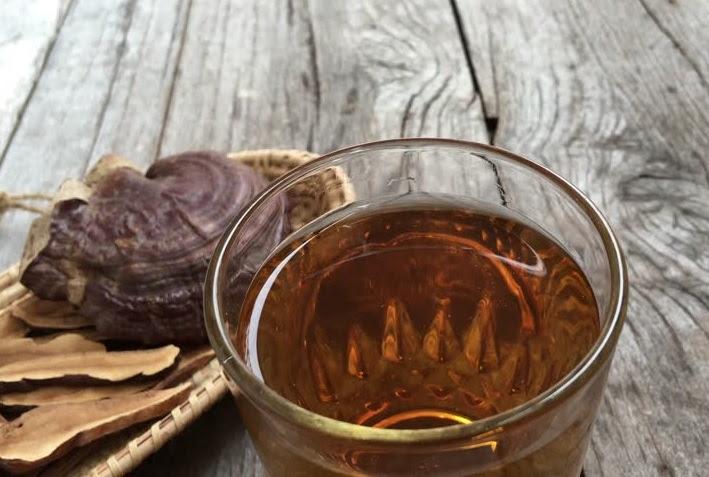 Nấu nấm linh chi bằng ấm thủy tinh được không ? 2