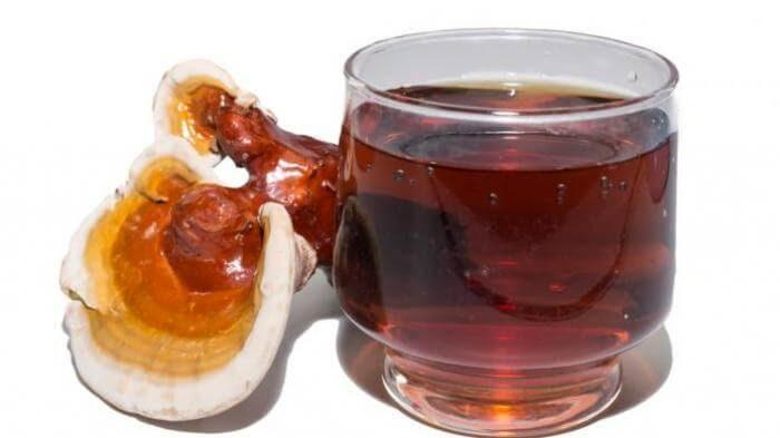 Phụ nữ đang cho con bú cho uống nấm linh chi được không? 3