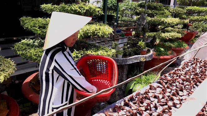 Làm sao để tránh cho nấm linh chi không bị mốc, mối mọt ăn ??? 4