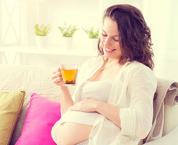 Nấm linh chi có công dụng gì đối với phụ nữ đang mang thai? 1