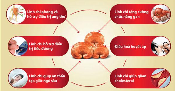 Bật mí 5 tiêu chí chọn nấm chất lượng có thể bạn chưa biết 2