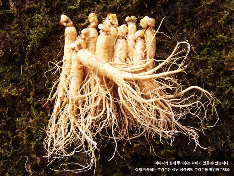 Chia sẻ công thức làm món cơm trộn nhân sâm tươi đúng vị Hàn Quốc 1