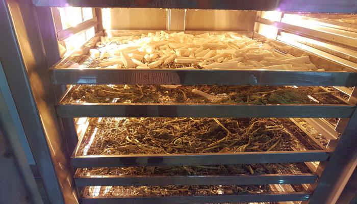 Hướng dẫn cách sấy nấm linh chi hiệu quả cao, nhanh khô 2