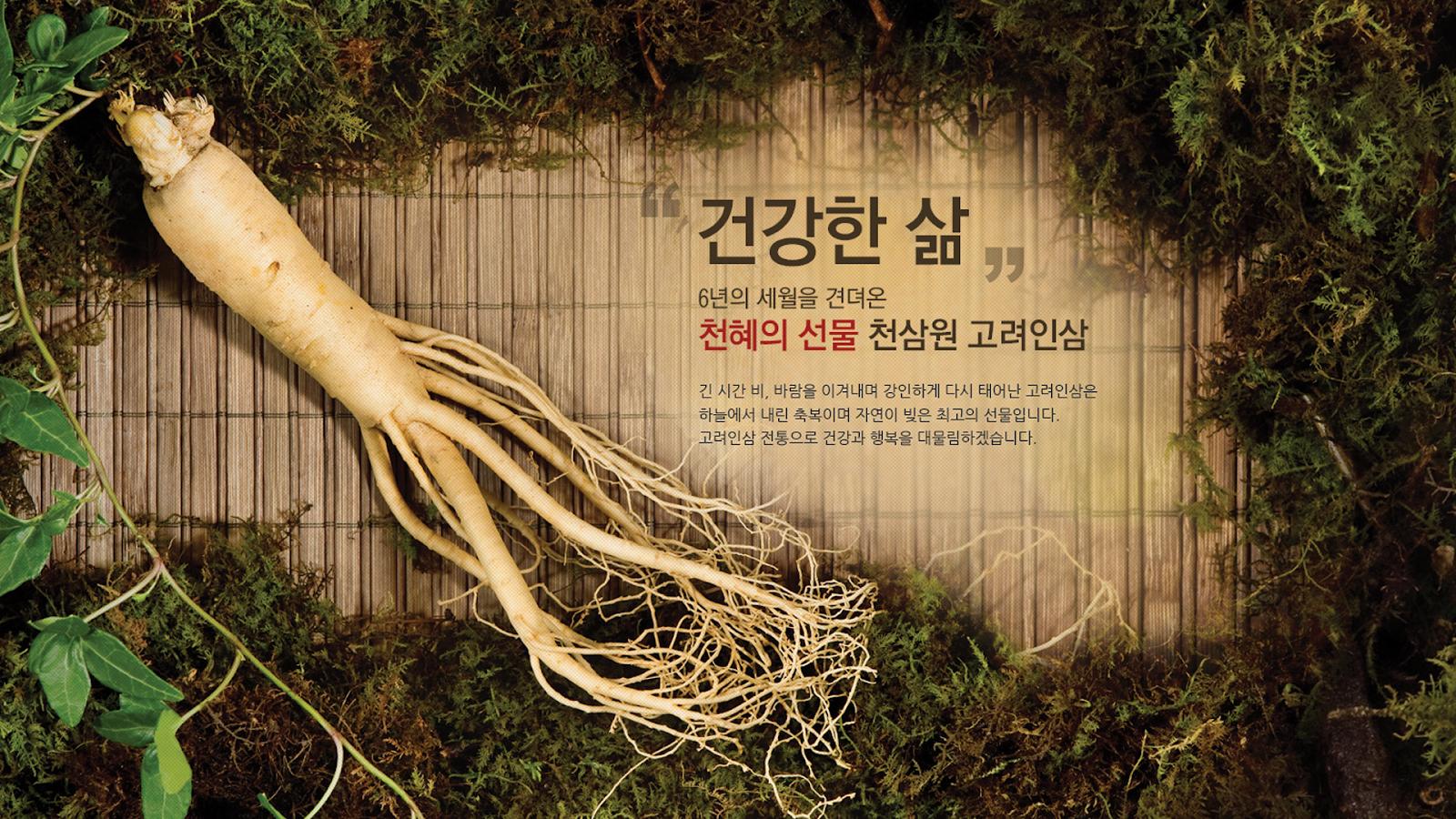 Ưu nhược điểm khi sử dụng nhân sâm tươi Hàn Quốc 1
