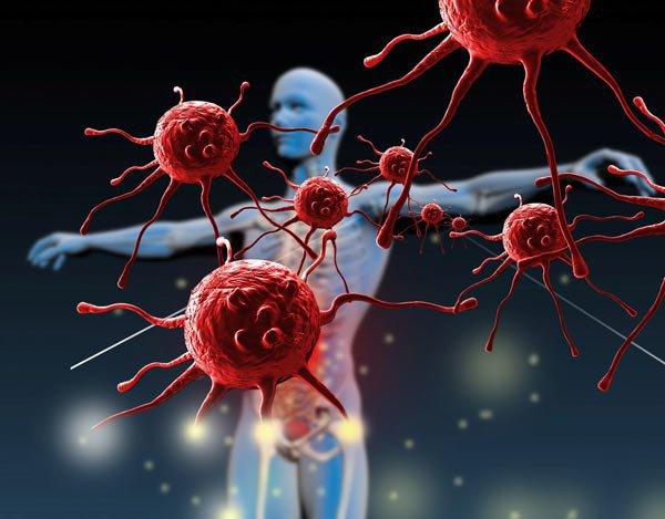 Nấm Linh Chi Hàn Quốc có tác động như thế nào đối với hệ miễn dịch? 2