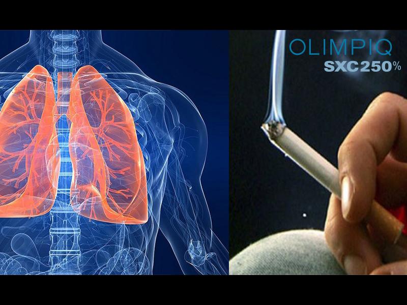 Công dụng của nấm linh chi đối với bệnh ung thư phổi 2