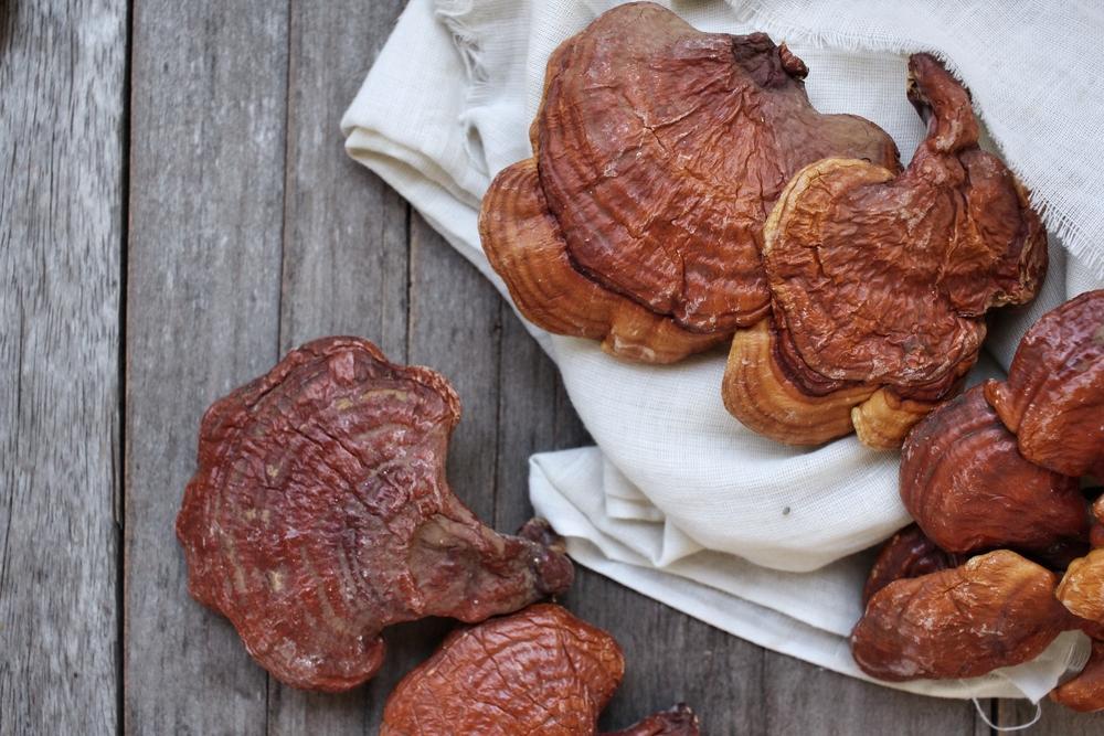 Tìm hiểu thêm về công dụng của 3 loại nấm linh chi, có thể bạn chưa biết 3