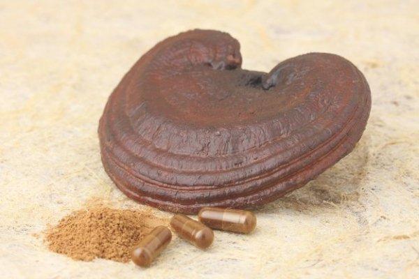Thành phần, công dụng và những lưu ý khi sử dụng nấm linh chi đỏ Hàn Quốc 1